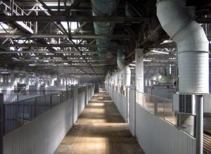 Разработаны методики повышения энергоэффективности на предприятиях Петербурга
