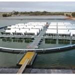 В Австралии запущена первая плавучая солнечная электростанция